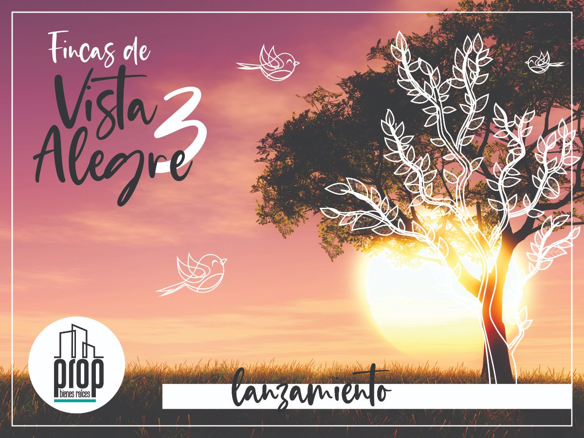 Fincas de Vista Alegre 3 | Acceso Ruta 7 | Anticipo + 24 cuotas