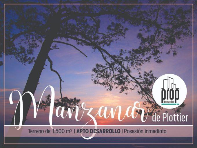Venta de terreno Manzanar de Plottier   APTO DESARROLLO