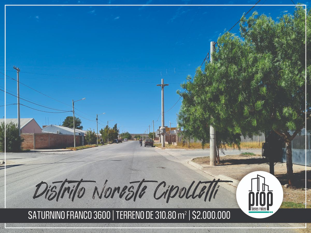 Terreno Barrio Distrito Noreste Cipolletti   Saturnino Franco 3600